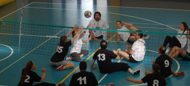 PGS Easy volley e sitting volley